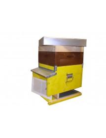 ARNIA D.B 12 FAVI completa fondo mobile antivarroa e fogli cererei montati