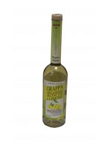 GENEPY - liquore da infuso di erba genepy (Artemisia)